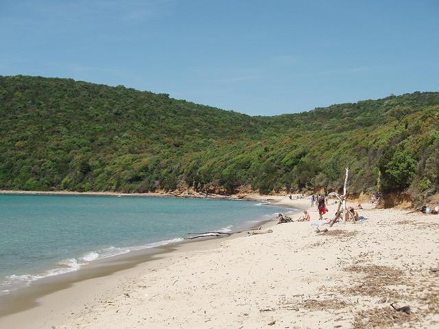 Scegli la Tua Spiaggia a SAN VINCENZO!